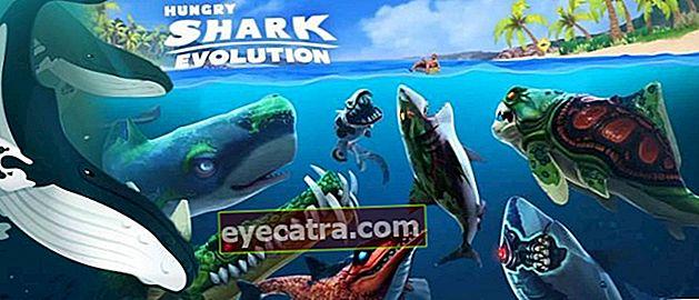 10 szórakoztató és vicces hal játék mobilon | Ingyenes akvárium!