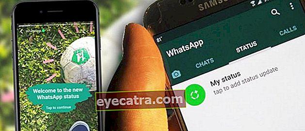 Sådan gemmes en andens WhatsApp-status uden yderligere applikationer!