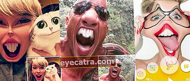I stedet for Saucy gør disse 5 sjove fotoredigeringsapplikationer i stedet dit ansigt baghold