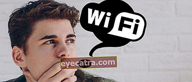Brug ofte, ved du hvad står Wi-Fi for?